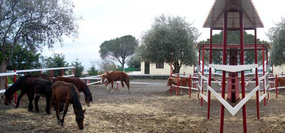 Maneggio - Portosalvo di Mascali (CT)